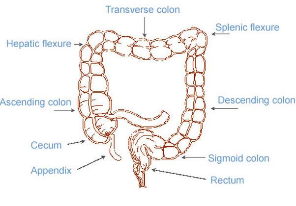 Splenic Flexure Syndrome