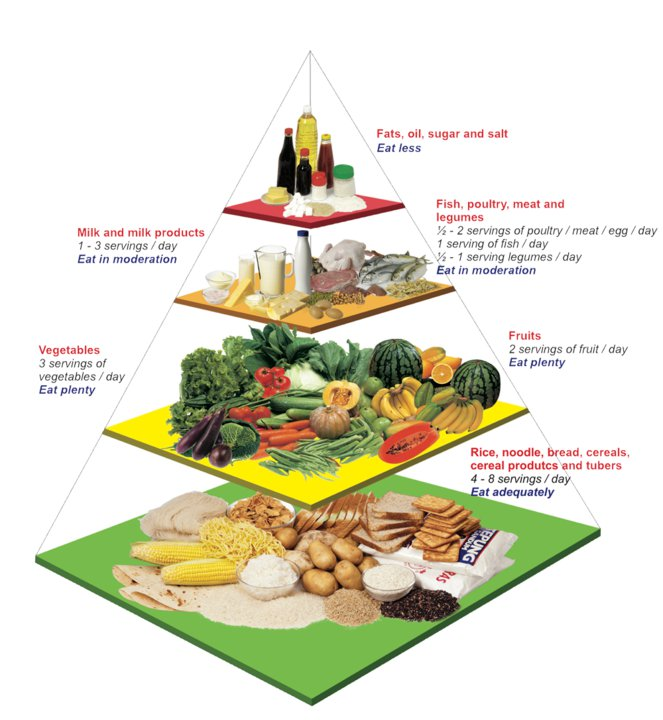 old age nutrition pyramid