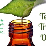 Uses-For-Tea-Tree-Oil