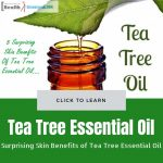 Benefits of Tea Tree Essential Oil