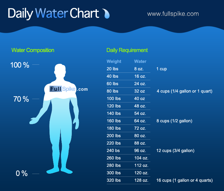 Much Water Do You Need During Dieting