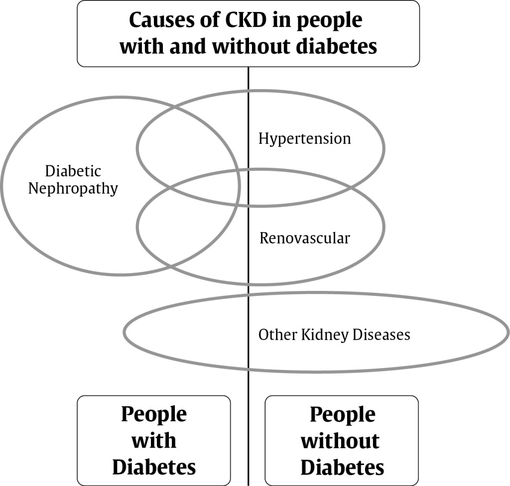 causing chronic kidney disorder