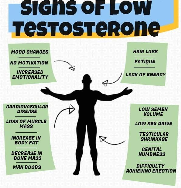 Signs of Low Testosterone in Males