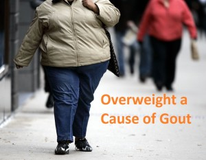 Overweight a Cause of Gout