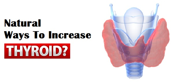 Natural Ways To Increase Thyroid Levels