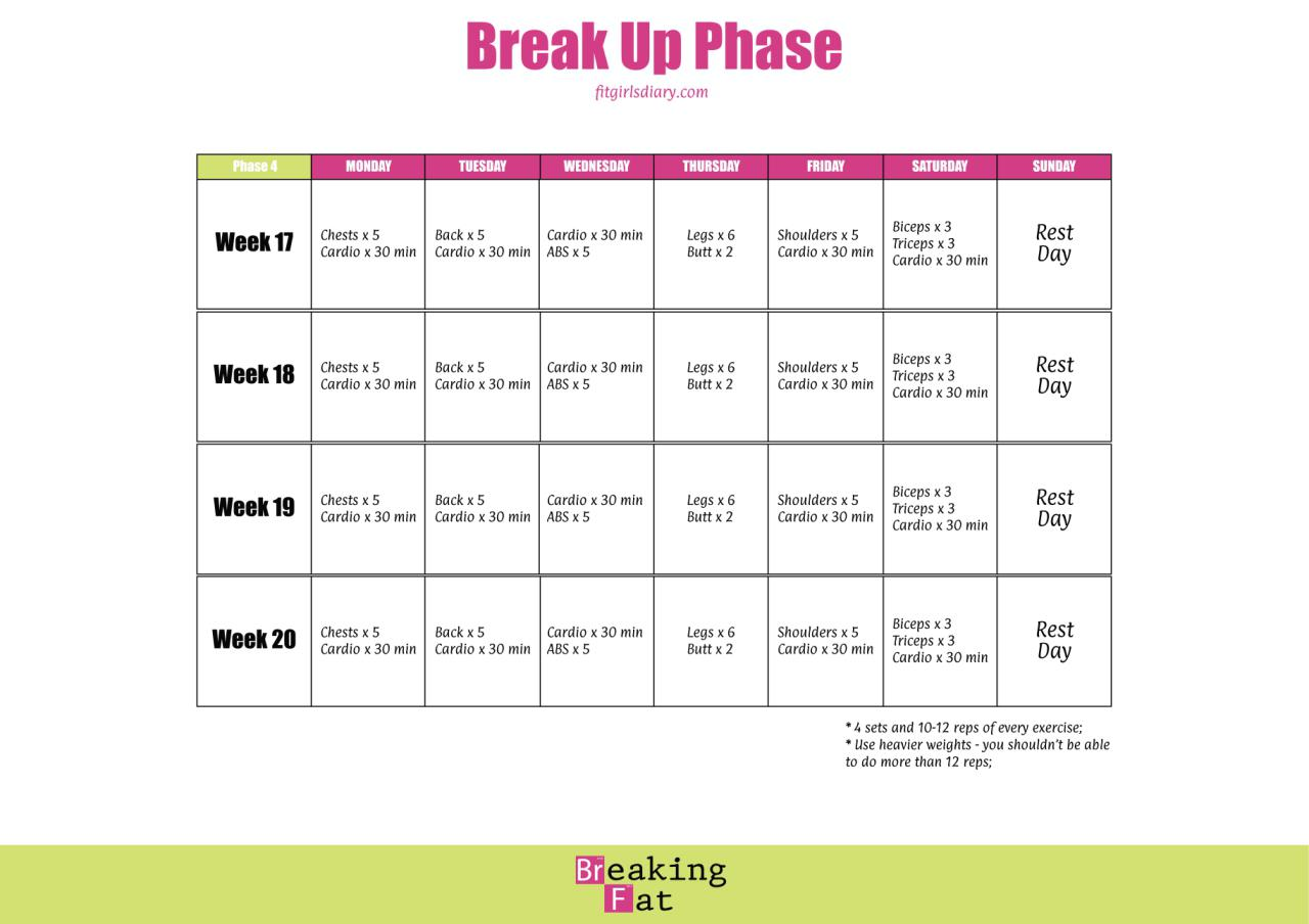 Breaking Fat Formula - BREAK UP PHASE - Fit Girl's Diary