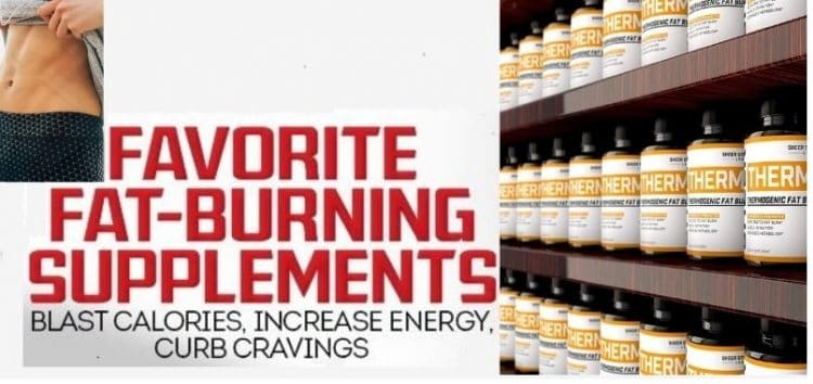 Sheer Thermo Review Best Fat Burner of 2021