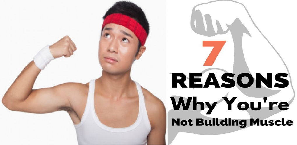 7 Reasons You are Not Building Muscle