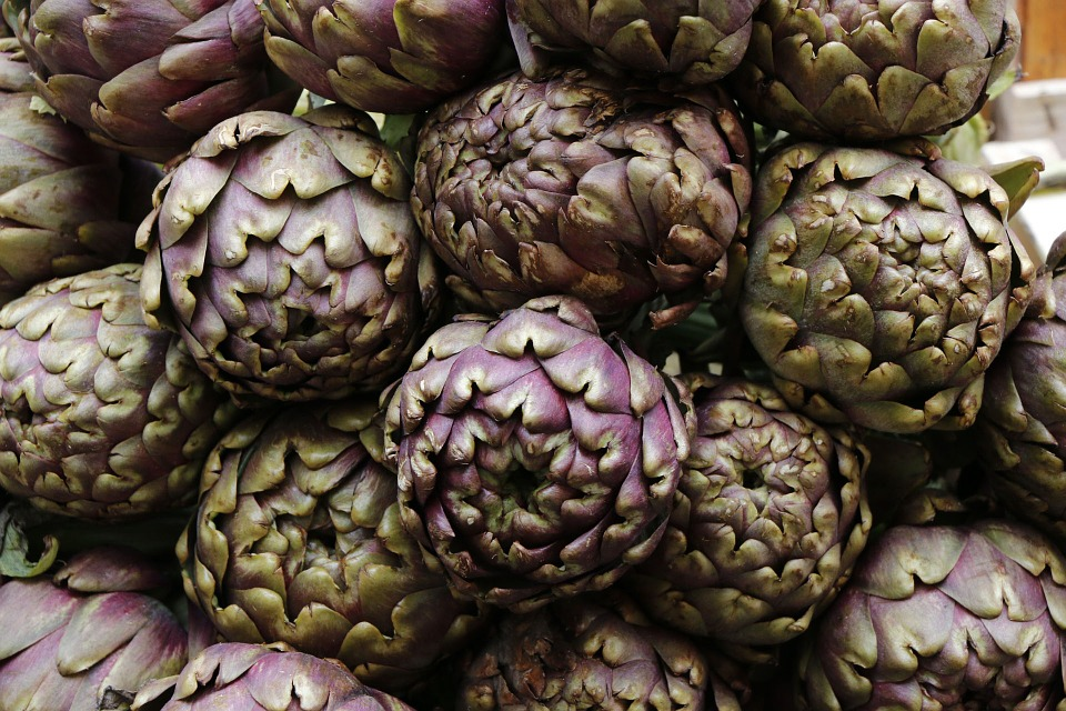 artichoke Aids Digestion