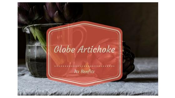 globe-artichoke-and-its-benfits