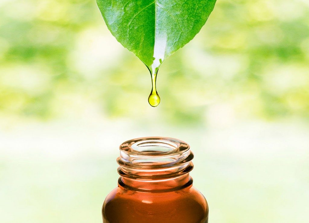 tea-tree-oil-1024x741 (1)