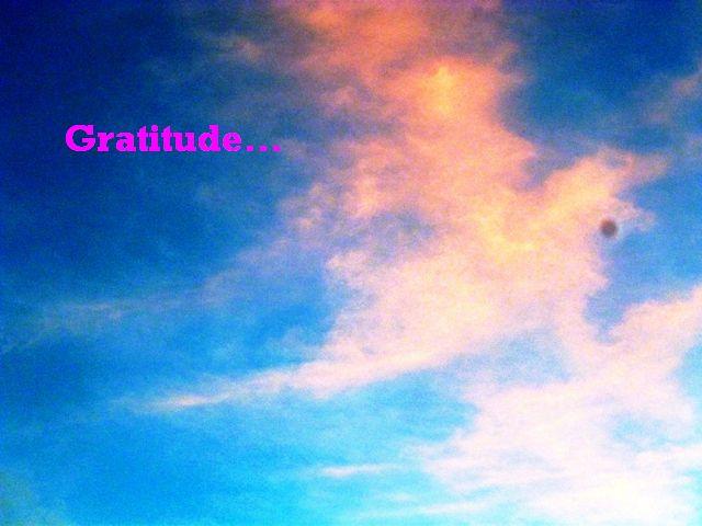 Express Thankfulness