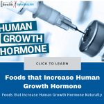 Foods that Increase Human Growth Hormone