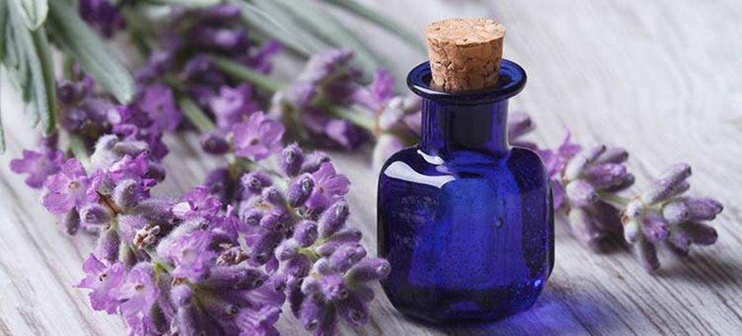 Best Essential oils and how to include them in your daily skin and hair care