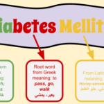 Diabetes_Mellitus.