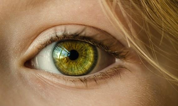 eye 1132531 340