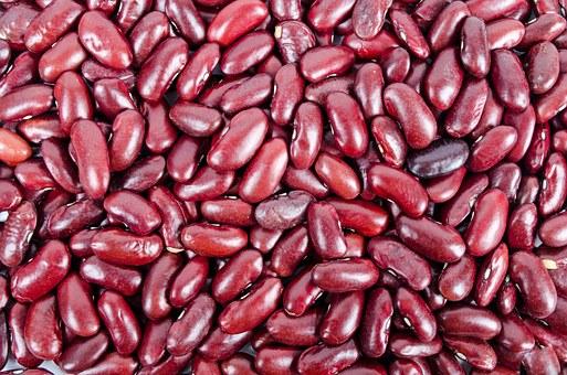 beans 316592 340