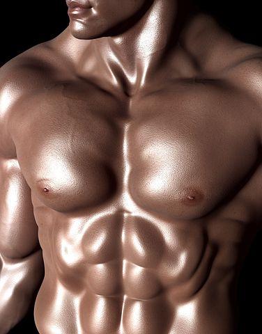 bodybuilder 331671 480