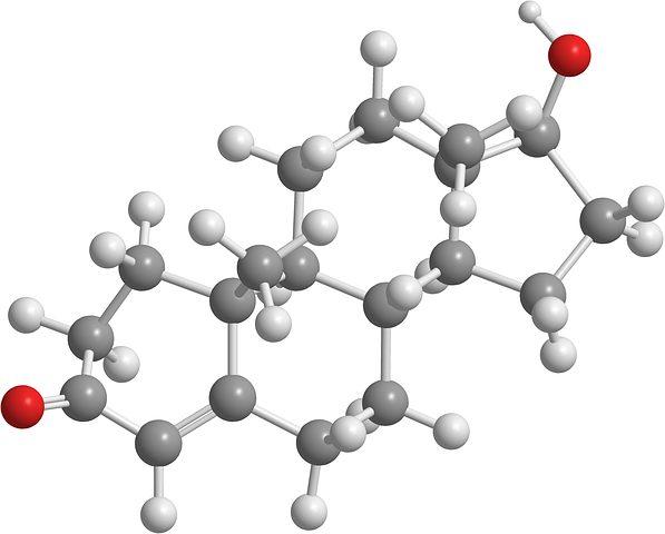 testosterone 2901425 480