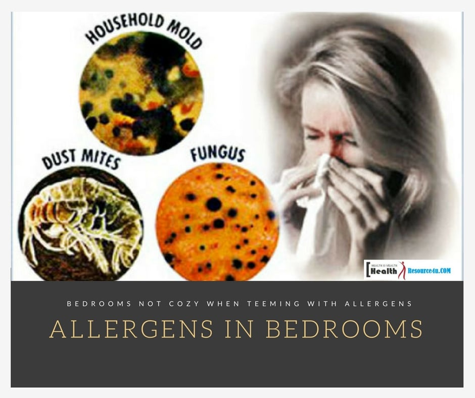 Bedrooms Are Not so Cozy When They Are Teeming with Allergens