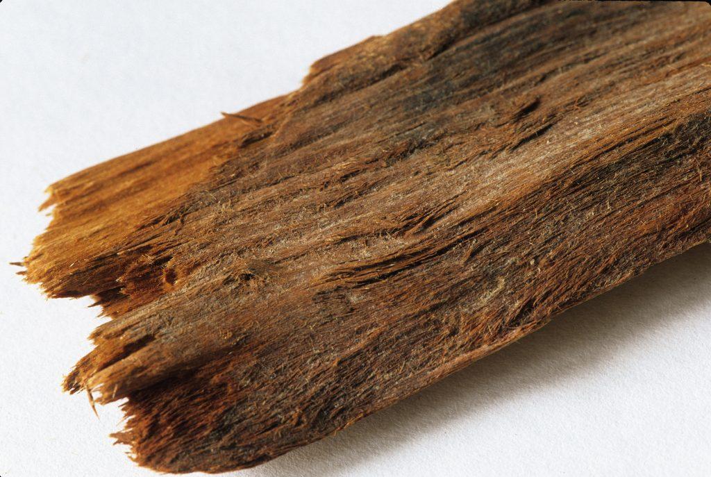 Yohimbe Root