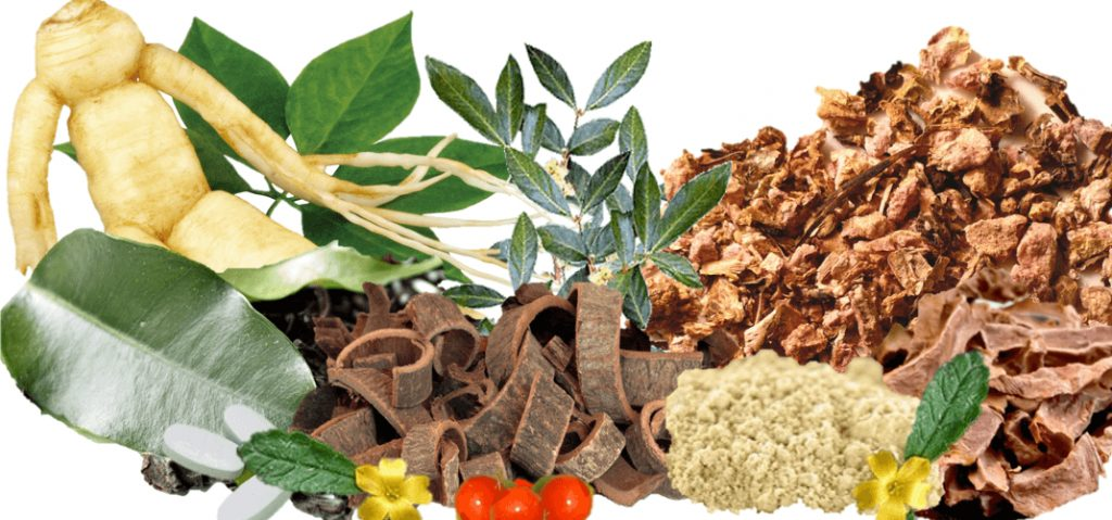pro-sexual herbs to boost libido