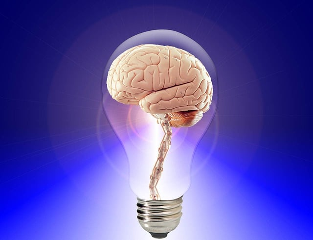 Give Your Brain A Boost