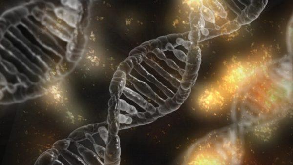 Decoding Your Genes