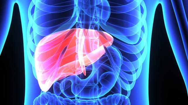 causes of enlarged liver