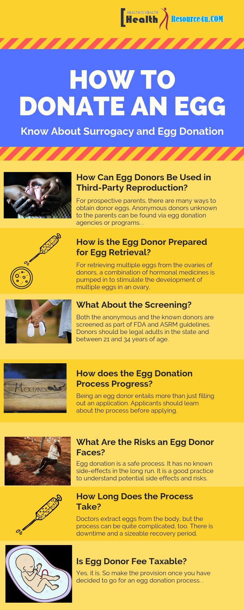 Infographic How to Donate An Egg