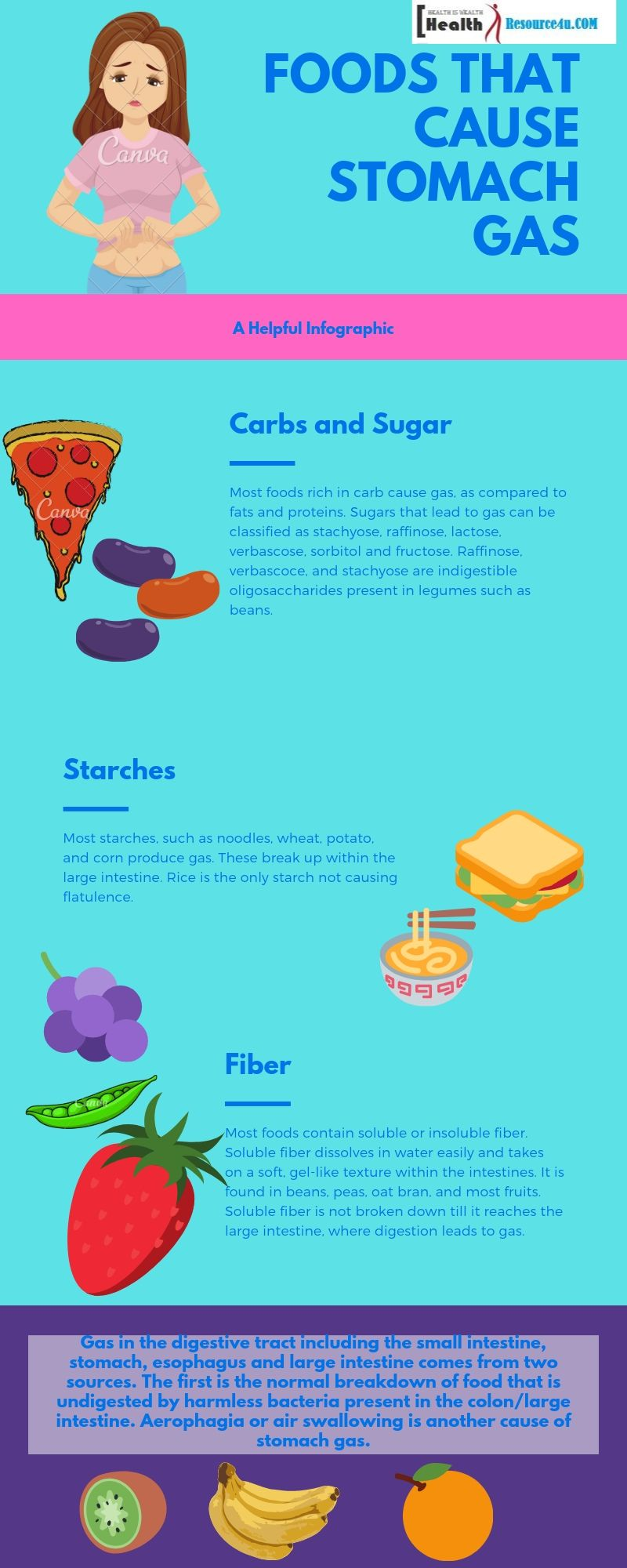 Causes of Stomach Gas Infographic