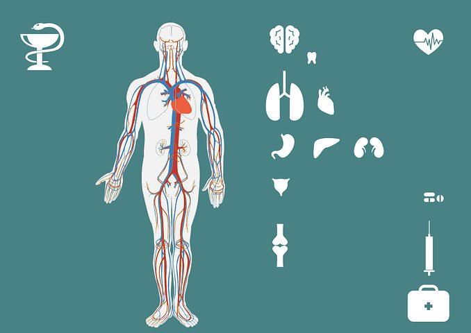 Ovarian Disease