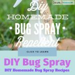 DIY Homemade Bug Spray