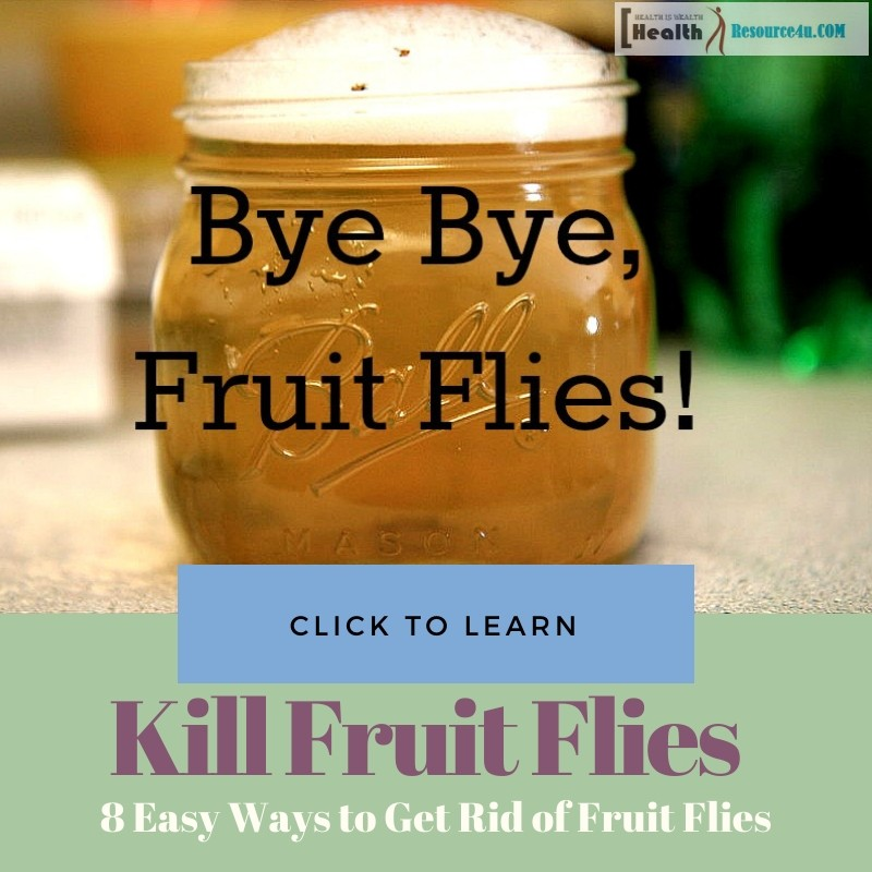 Ways to Get Rid of Fruit Flies at Home