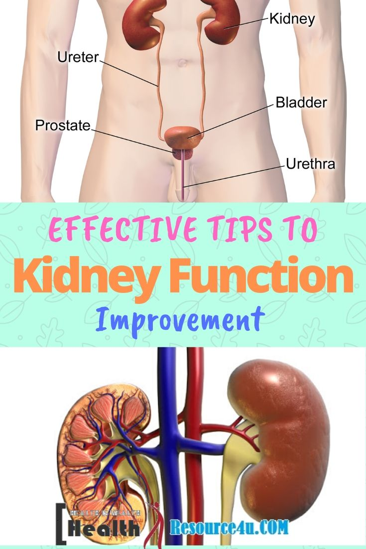 Tips to Improve Kidney Function