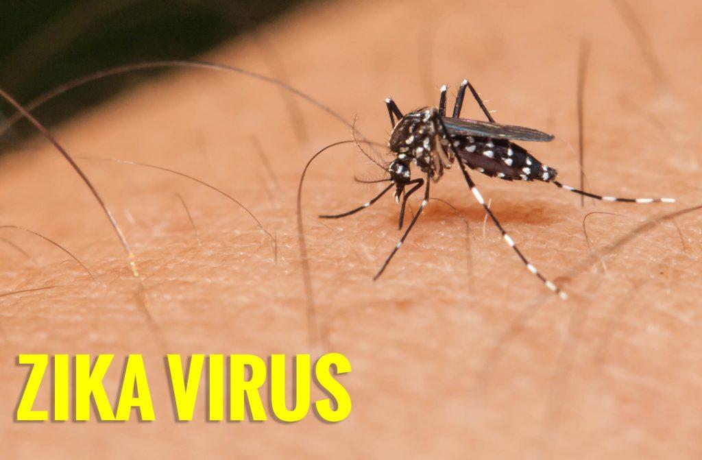 Zika virus disease
